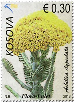 n° 289/293 - Timbre KOSOVO Poste