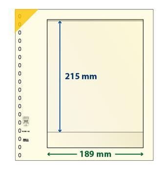 Feuille neutre LINDNER-T : 1 bande-802102P (x10)