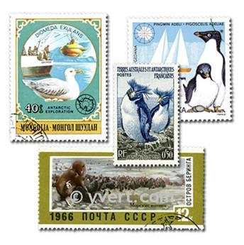 AUSTRALIE ANTARCTIQUE : pochette de 25 timbres