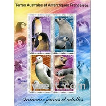 n.o 8 -  Sello Tierras Australes y Antárticas Francesas Bloque y hojitas