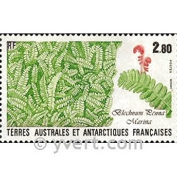 nr. 143 -  Stamp French Southern Territories Mail